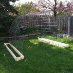 Trellis and Raised Garden Bed Combo