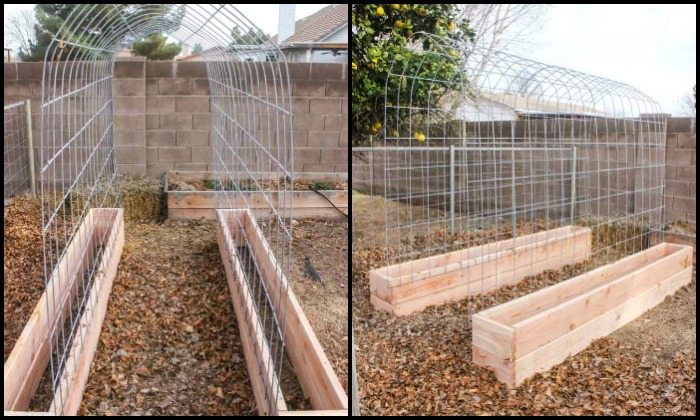 Trellis and raised garden box combo
