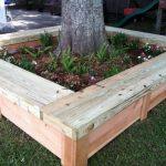 Bench Around Tree Samples
