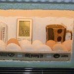 DIY Styrofoam Egg Incubator