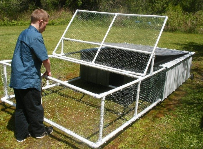 Build a chicken tractor from pvc diy projects for everyone