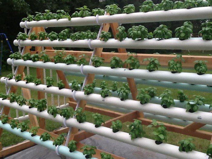 Grow More Plants With An A Frame Hydroponic System Diy