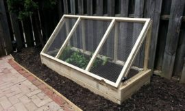 Build a City-Proof Garden to protect your produce from rodents