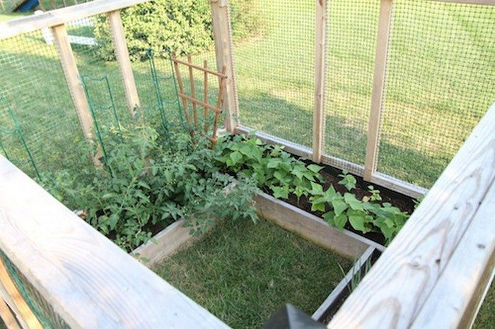 raised enclosed garden bed