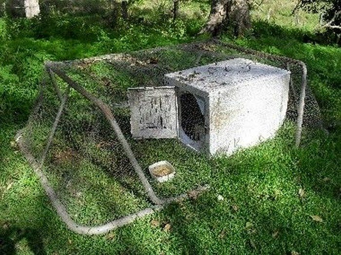 Old Washing Machine Chicken Coop