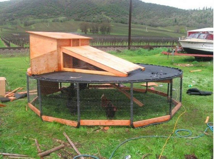 Old Trampoline Chicken Coop