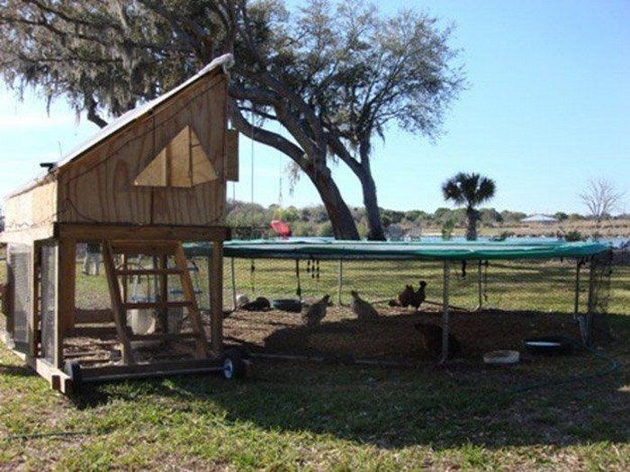 alternative chicken coop ideas diy projects for everyone