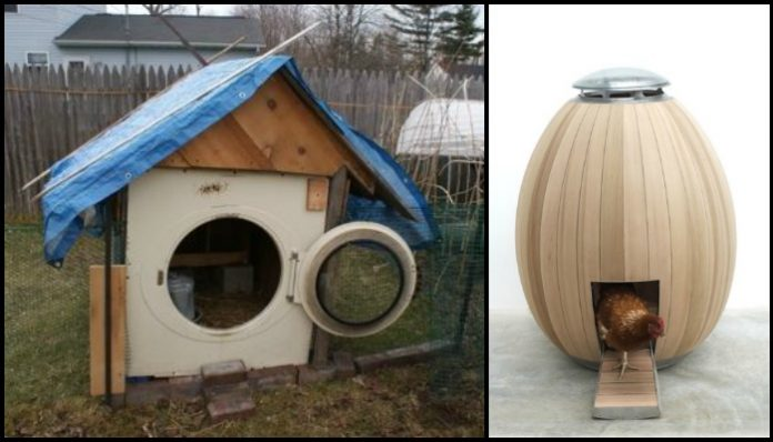 Alternative Chicken Coop Ideas