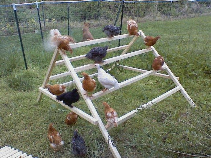 Backyard Jungle Gym Diy : Thanks to Chicken Boo for this great project You can get stepbystep
