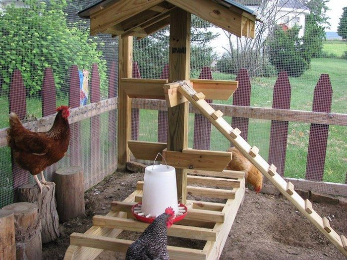 Jungle Backyard Ideas : Thanks to Chicken Boo for this great project You can get stepbystep