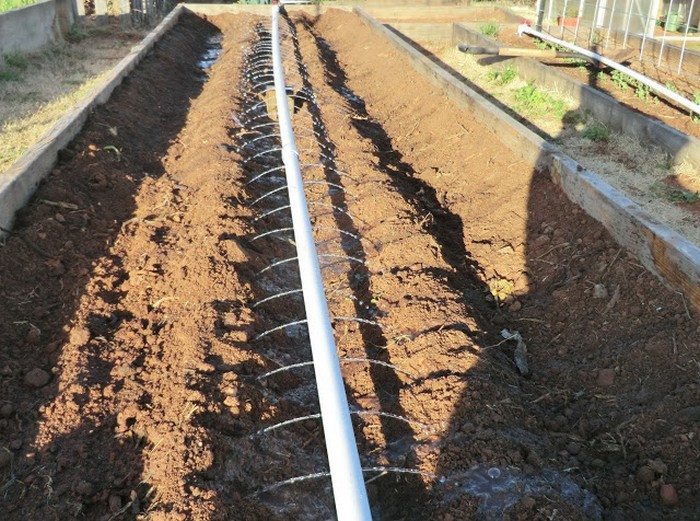 Build a drip irrigation system for under 50 diy projects for everyone - Diy drip irrigation systems ...