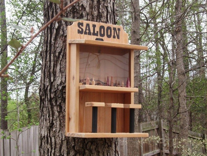 How to make a saloon bird feeder | DIY projects for everyone!