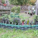 Repurposed Garden Hose Ideas