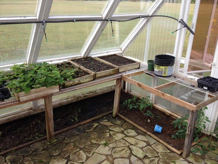 Build A Gorgeous Greenhouse From Old Windows Diy