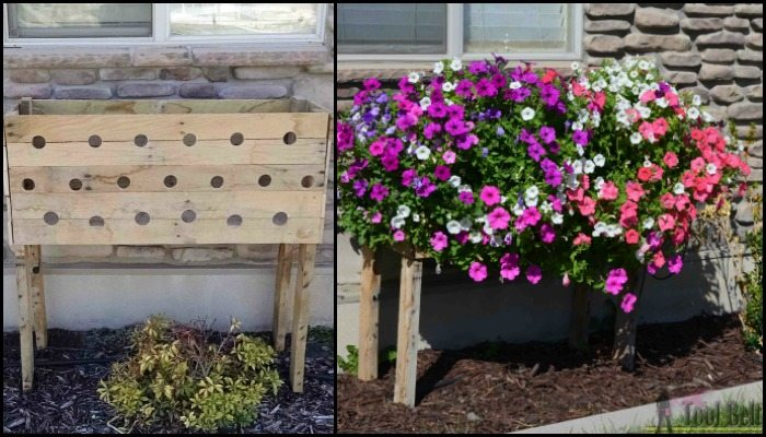 Build a pallet planter box perfect for cascading flowers!