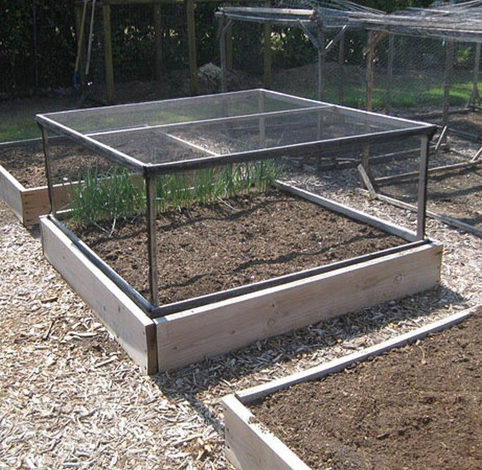 Grow and protect your produce with a removable raised garden bed