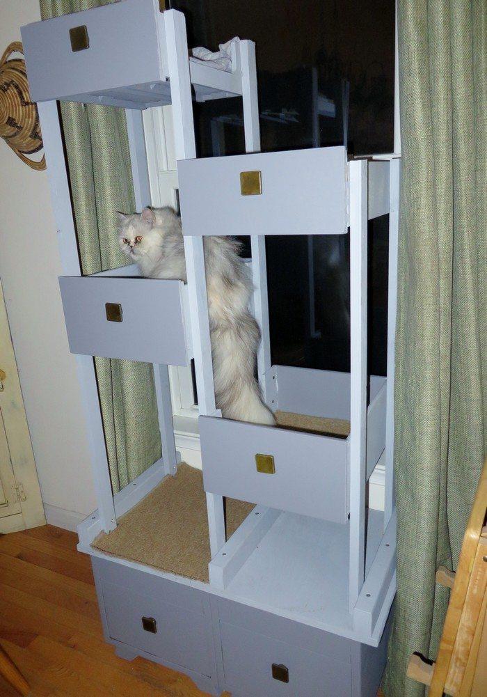 how to make a diy cat spa