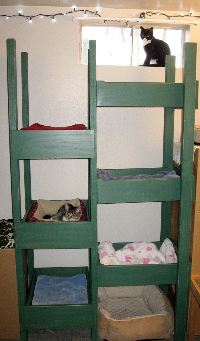 ... inexpensive cat tree using old drawers | DIY projects for everyone