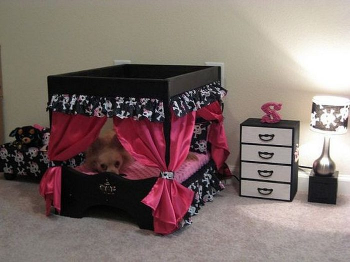 Turn a small closet into a dog bedroom diy projects for for Dog room furniture