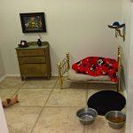 Dog Bedroom