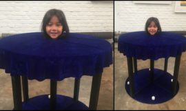 Living Head Illusion Halloween Project