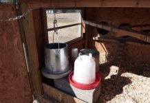 Cinder Block Chicken Waterer Heater