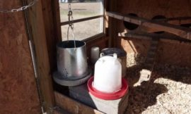 Build a cinder block chicken waterer heater!