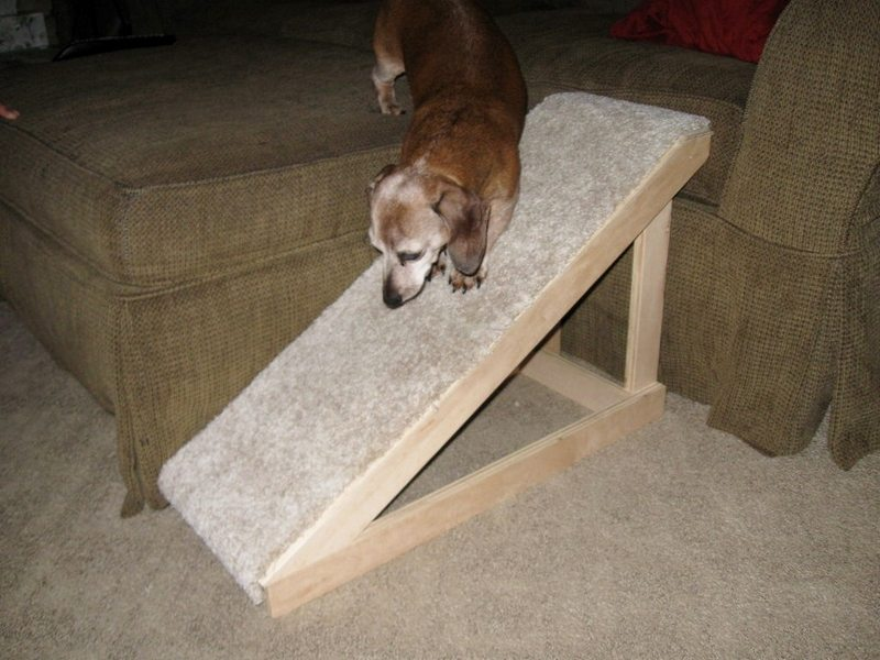 Instead of buying a dog ramp, make it a DIY project.