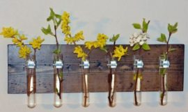 DIY Test Tube Planter