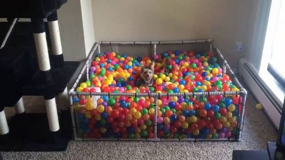 For endless fun, make your kids their very own ball pit at home!