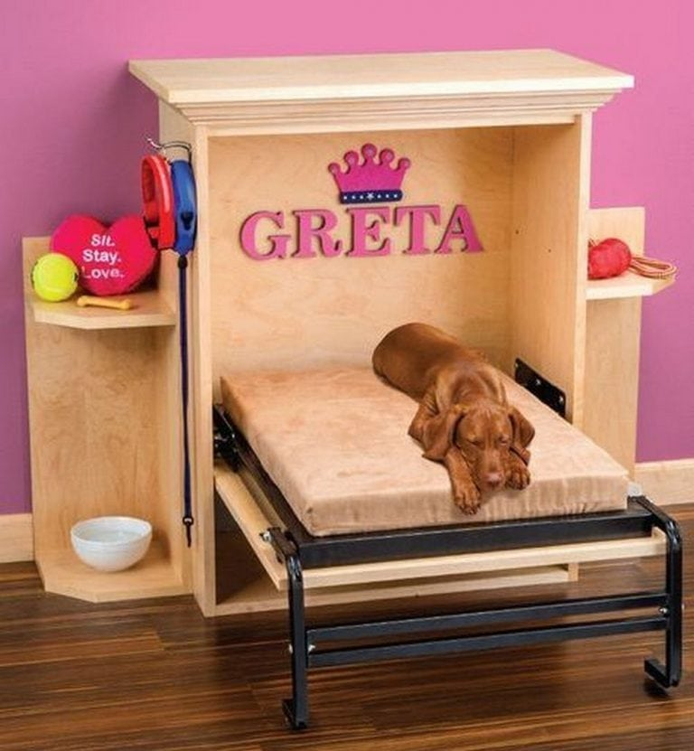 How to Build a Pet Murphy Bed