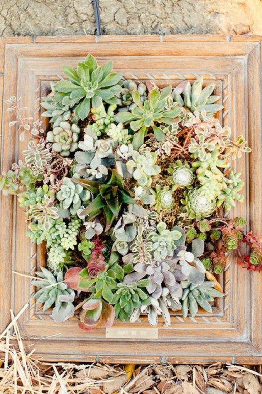 DIY Picture Frame Planter