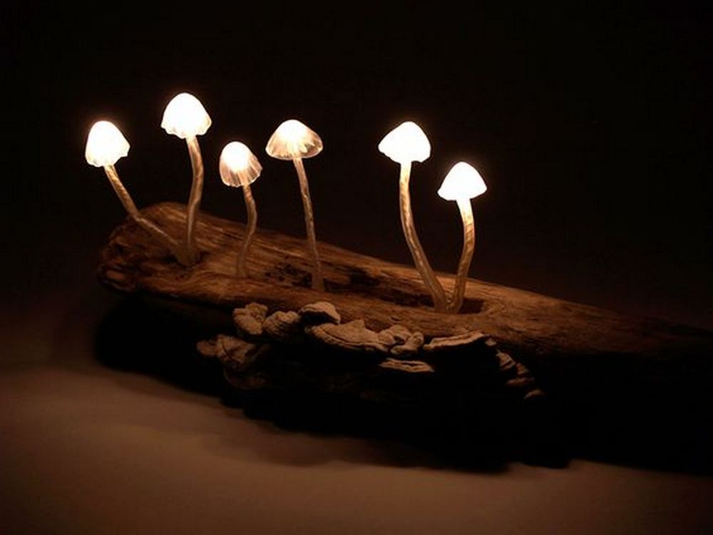 These mushroom lights will make perfect accents to your garden.
