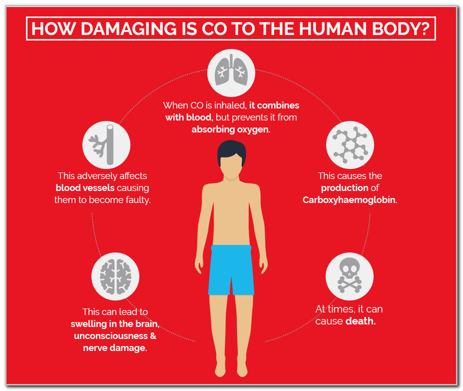 What happens to the body when you inhale carbon monoxide?