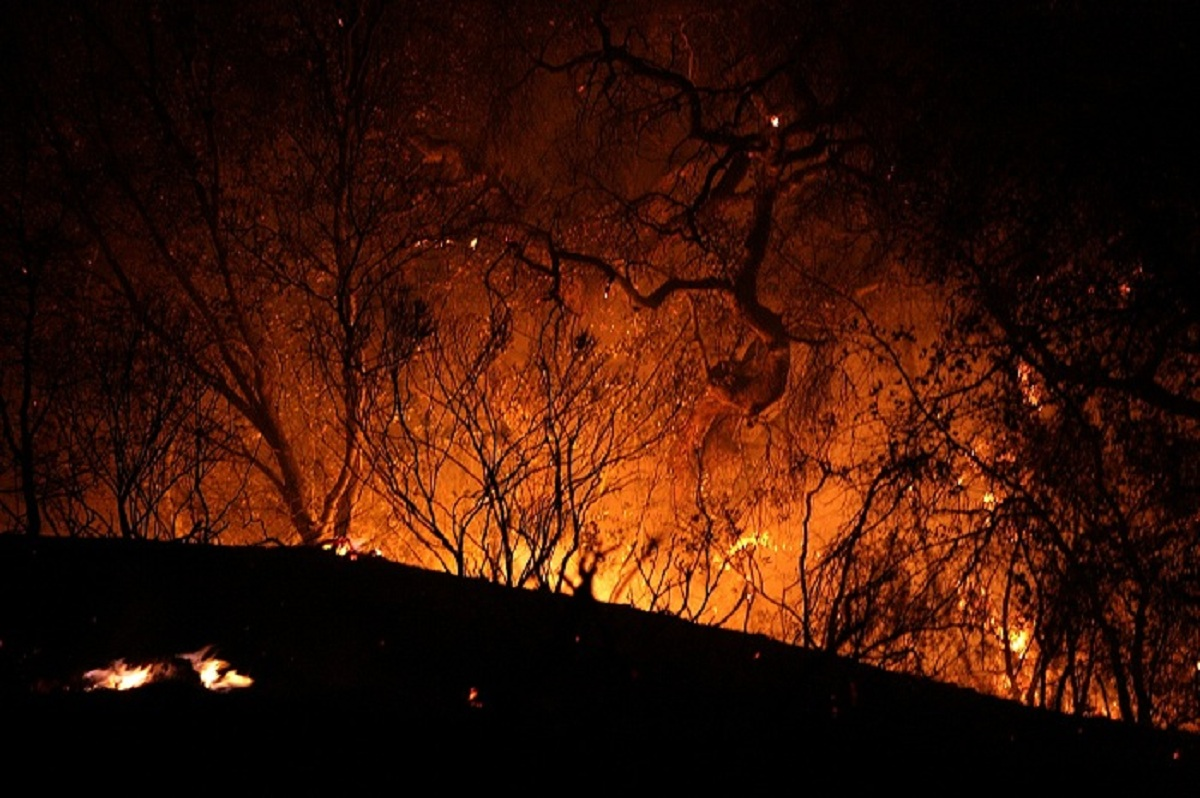 Life or Death? Basic Fire Prevention and Safety Tips