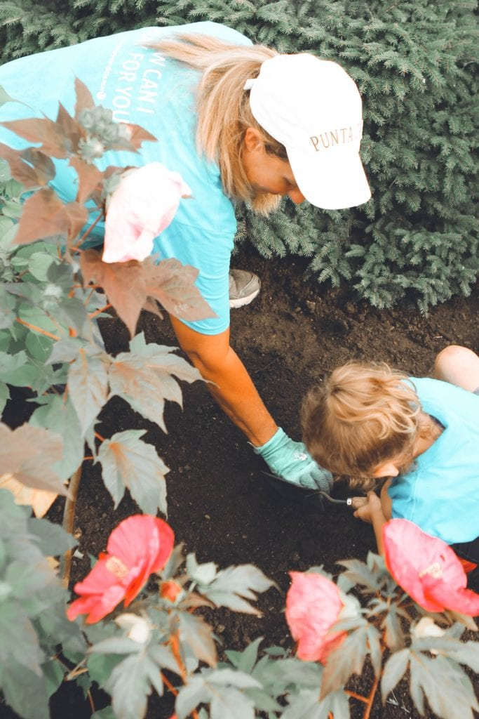 Make it a family activity as rose plants can last for generations!
